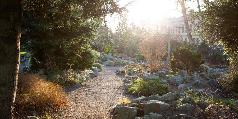 Gångstig i botaniska trädgården i Lund