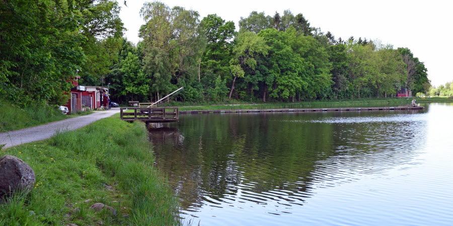 Damm med fiskebrygga med skog bredvid.