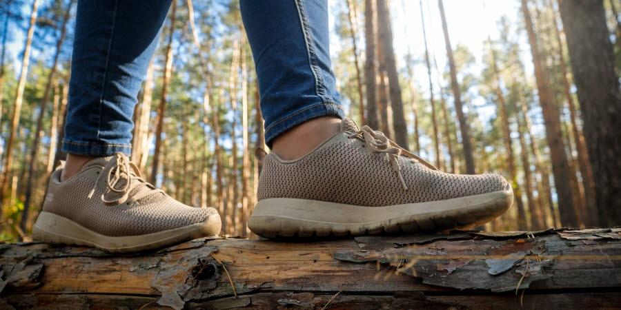närbild fötter på en trädstam i skogen